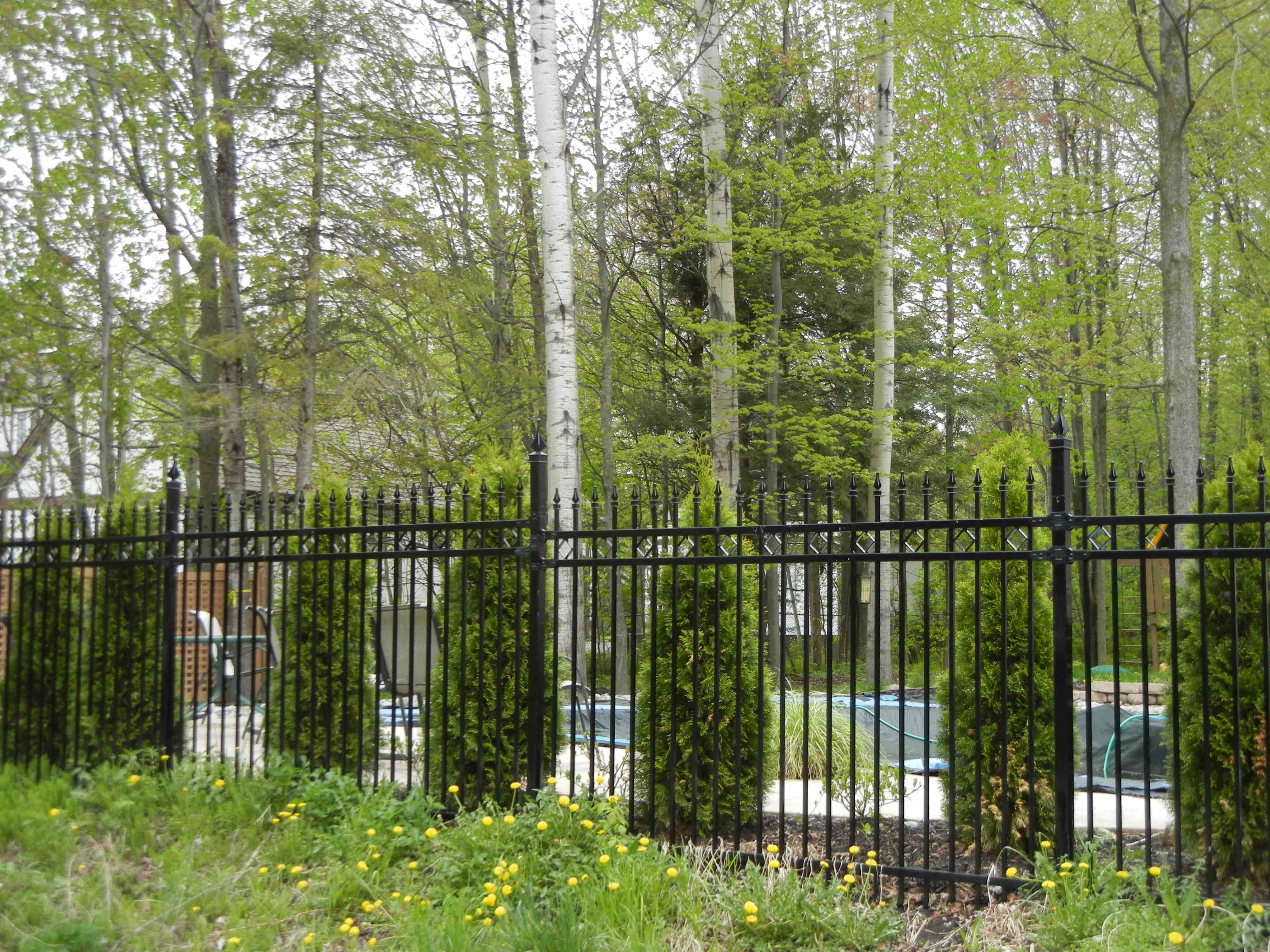 iron fence for pool safety